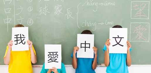 Chinese Enrichment Classes
